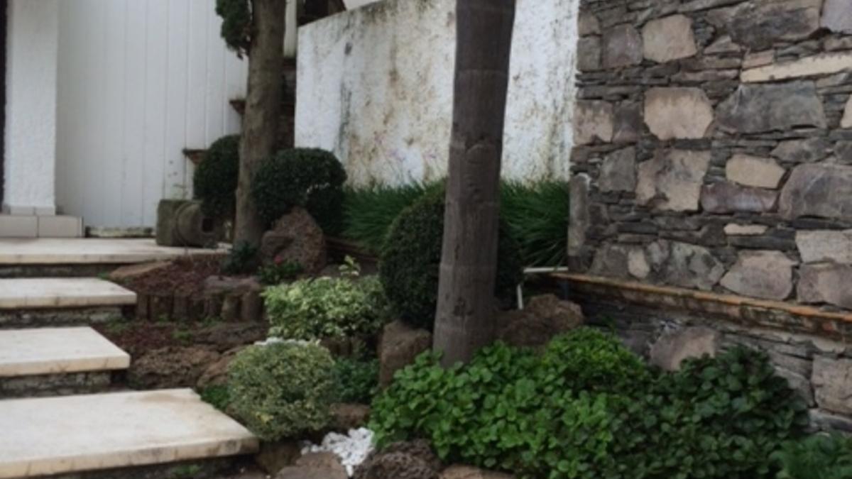 Jardin lateral escaleras entrada