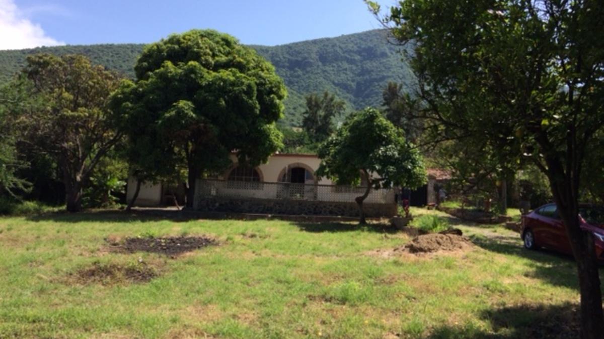 Tuxcueca 9