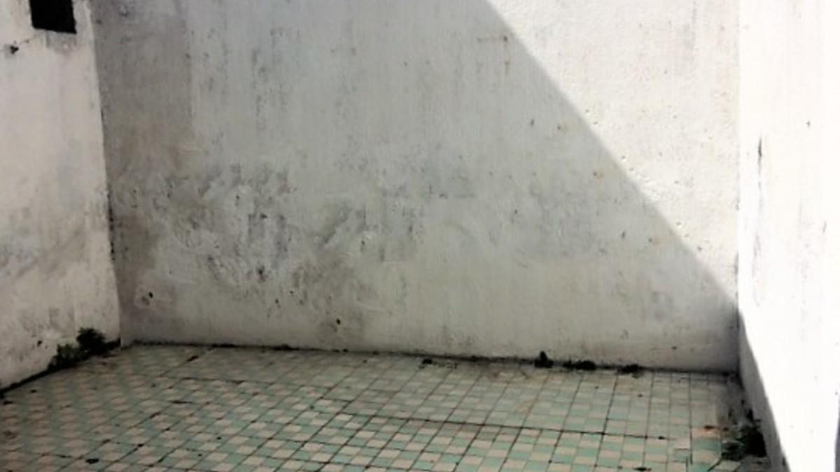 11 mirador patio