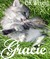 Gracie by B.K. Wright