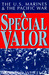 A Special Valor by Richard Wheeller