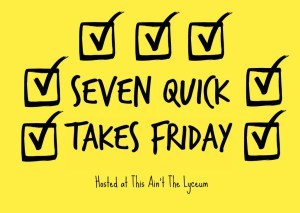 seven-quick-takes-friday-2-1024x727