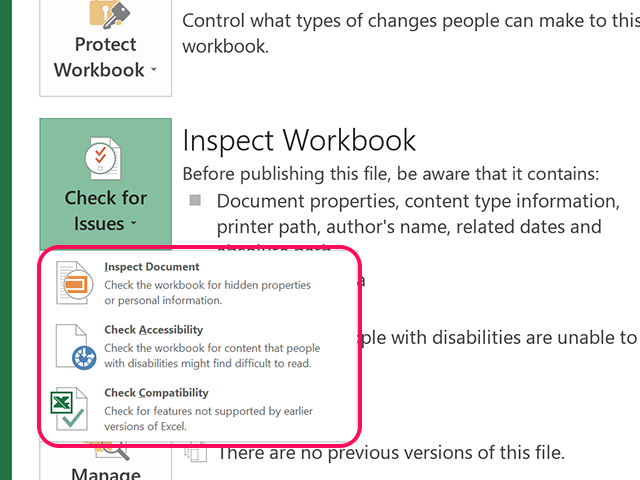 Inspect Workbook options.