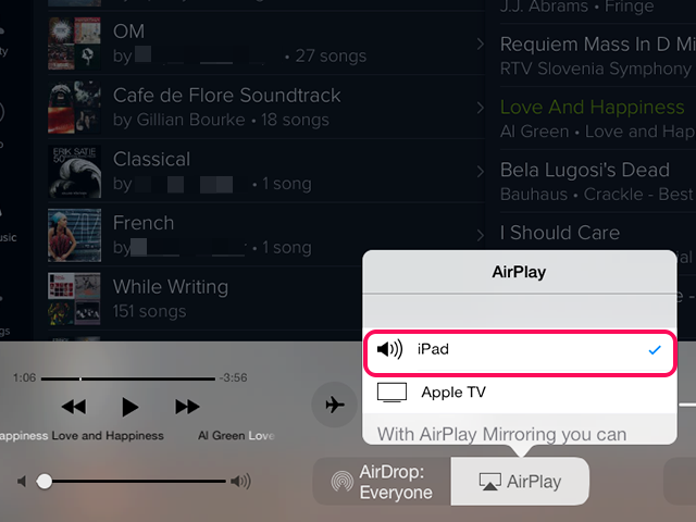Select iPad.
