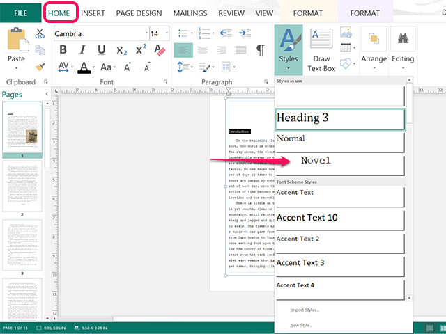 The Novel style was imported when the Word document was imported.
