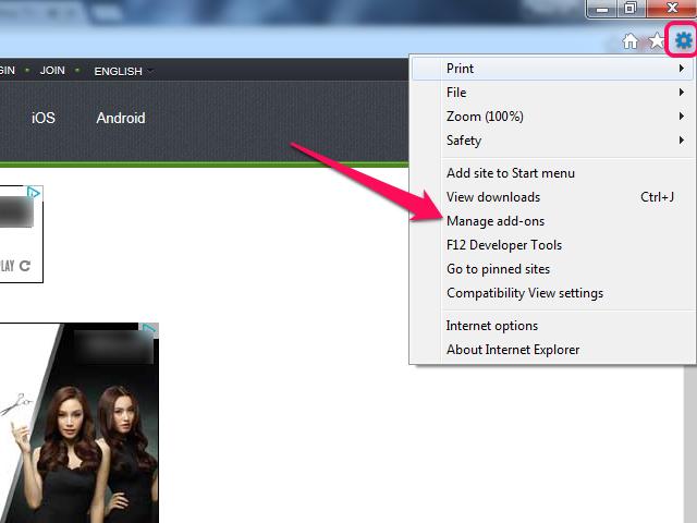 Internet Explorer cog menu.