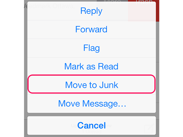 Select Move to Junk.