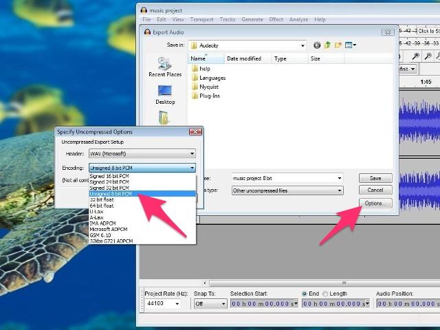 Select Unsigned 8-bit PCM.