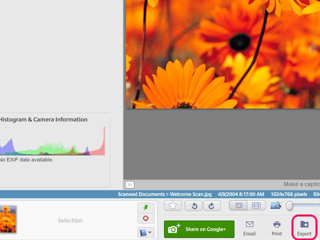 Select photos and click the Export button.