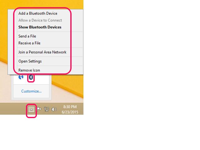 Bluetooth Options.