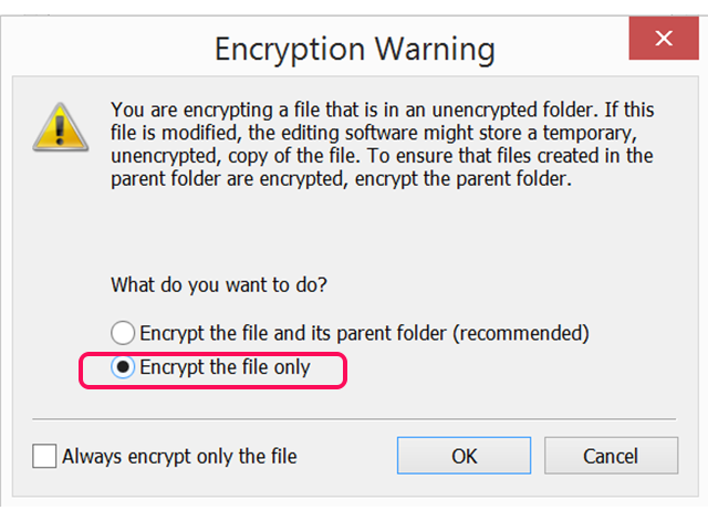 Select Encrypt the File and Its Parent Folder.