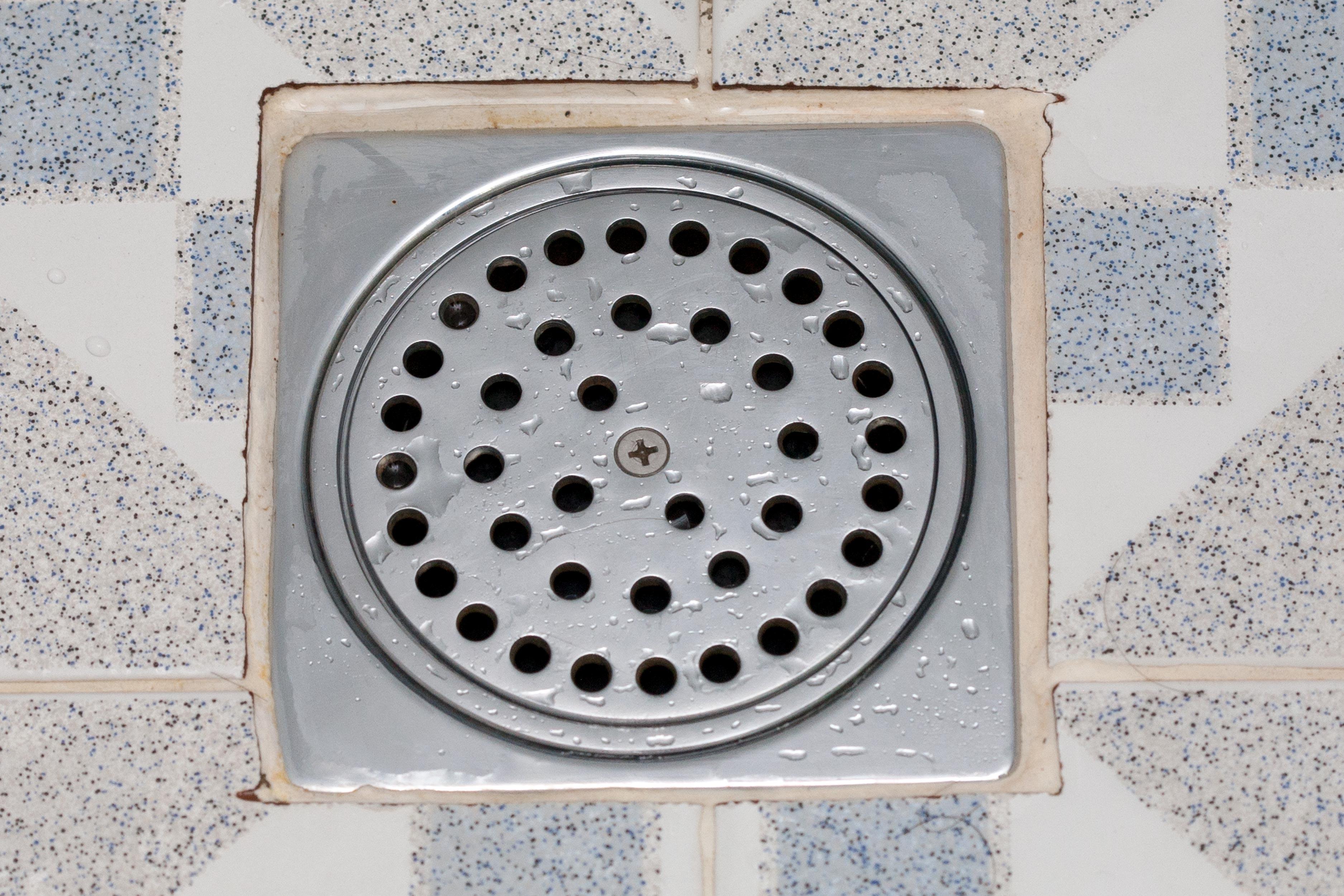 Como se livrar de vermes no ralo do chuveiro eHow Brasil #614D41 3750 2500