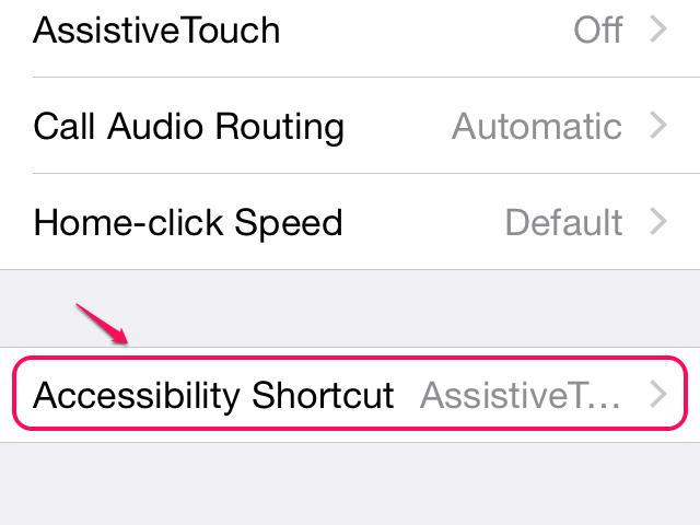 Accessibility Shortcut option