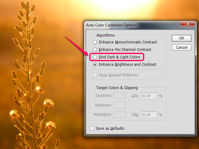 The Auto Color Correction Options dialog box in Photoshop.