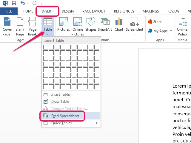 Insert a new Excel spreadsheet through the Excel Spreadsheet feature.