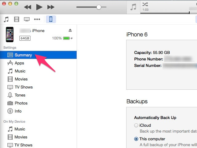 iTunes: iPhone list of options