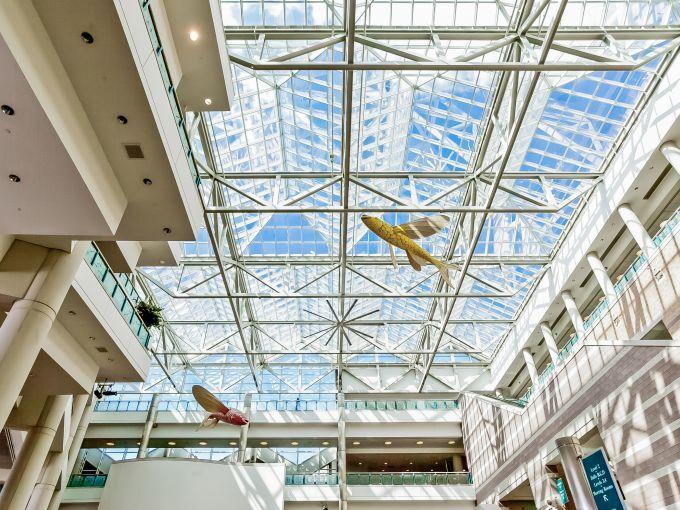 Atlantic City, Convention Center, meetings, trade shows, conferences, conventions, expos, interior, architecture, fish, atrium lobby, design, roof, ceiling