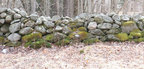New_england_stone_wall_medium