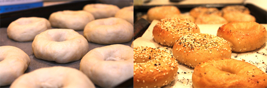 bagels, from dough to bread