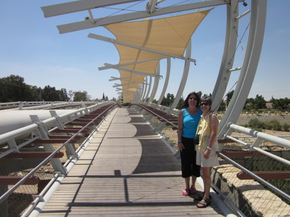 Newton's Judith Sydney and Aviva Sapers Return from Israel