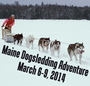 Dog-Sledding Trip to Maine for Jewish Adventurers