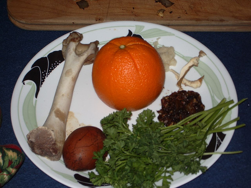 Anita Diamant: The Orange on the Seder Plate