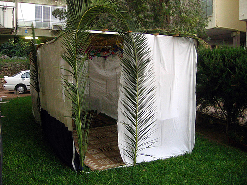 Sukkot in your 20s and 30s
