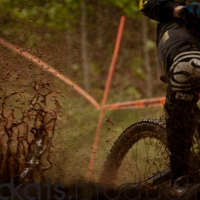 Roost was a common theme during the weekend.