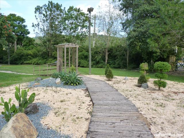 Caguas botanical garden for Bodas en el jardin botanico de caguas