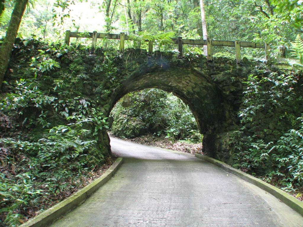 Parque de las cavernas del r o camuy for Turismo interno p r