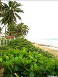 Playa los Almendros - CAMUY