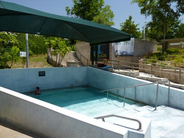 Extractores De Baño Puerto Rico:ZeePuertoRicocom – Coamo Termal Baths