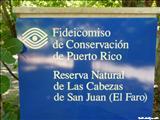 Reserva Natural las Cabezas de San Juan - FAJARDO