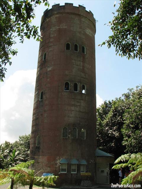 Bosque Nacional El Yunque - ZeePuertoRico.com