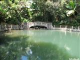 Bosque Nacional El Yunque - LUQUILLO
