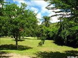 Centro Ceremonial Indígena de Tibes - PONCE