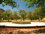 Parque Luis Muñoz Rivera - SAN JUAN