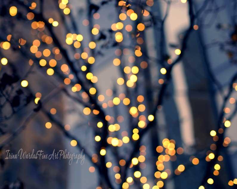 Night Tree Lights