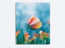 tulip_blue_portrait