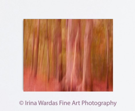 Tree-Abstract-Photography-Canvas
