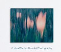 tulip-on-canvas-wall-decor