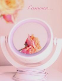 rose-in-mirror art decor