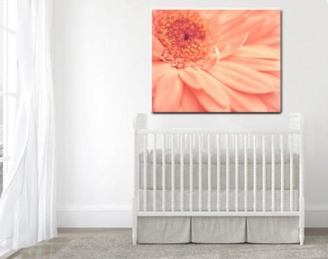 peach-wall-daisy-wall-canvas