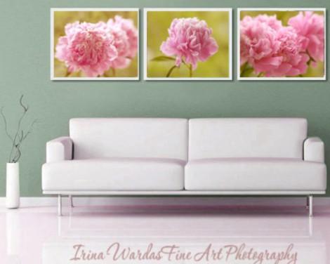 pink peony wall decor set
