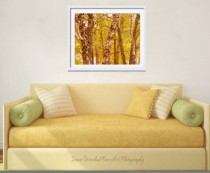 autumn tree photography home decor