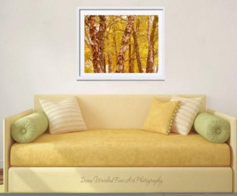 autumn tree photography home decor