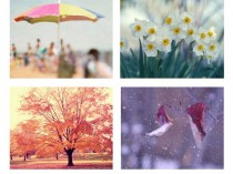 seasonal photography