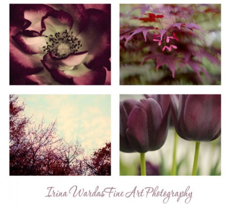 burgundy wall print