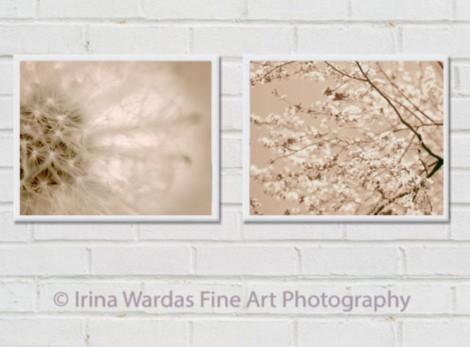 Irina Wardas Fine Art