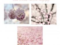 healing color pink